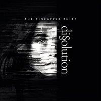PINEAPPLE THIEF: Neue Single