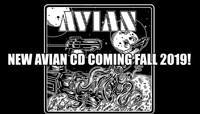 AVIAN Comeback-EP kommt noch im Herbst
